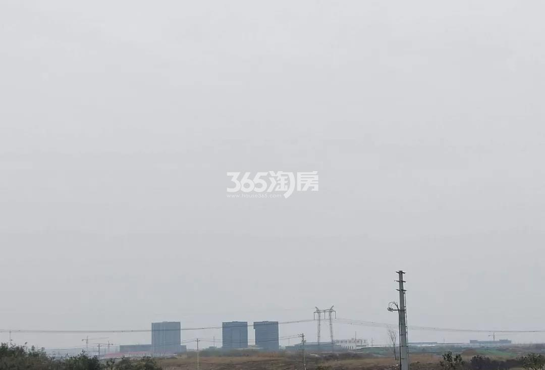 滁州三巽禄口G53地块实景图