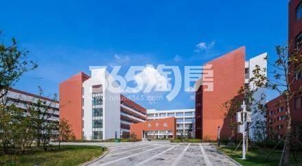 东方樾府周边学校实景图(2018.1.1)