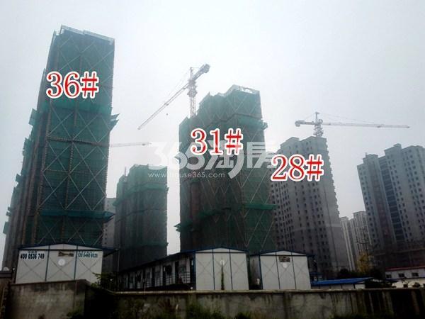 绿地工润和平壹号三期36#、31#、28#工地实景图(10.17)
