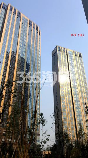 水岸清华瀚宫实景图