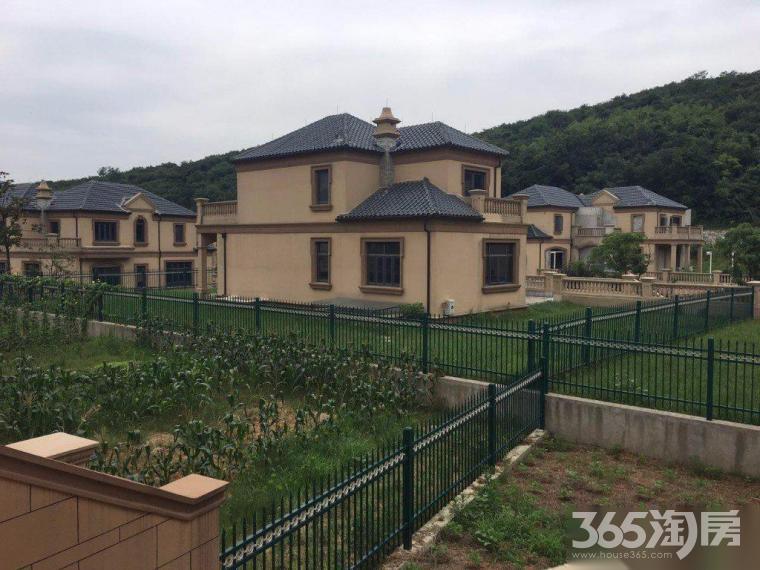 宝华独栋别墅 带220平大院子和游泳池 景区旁 仙林万达茂旁