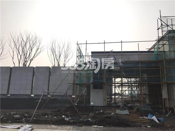 扬子江金茂悦施工进展(3.2)