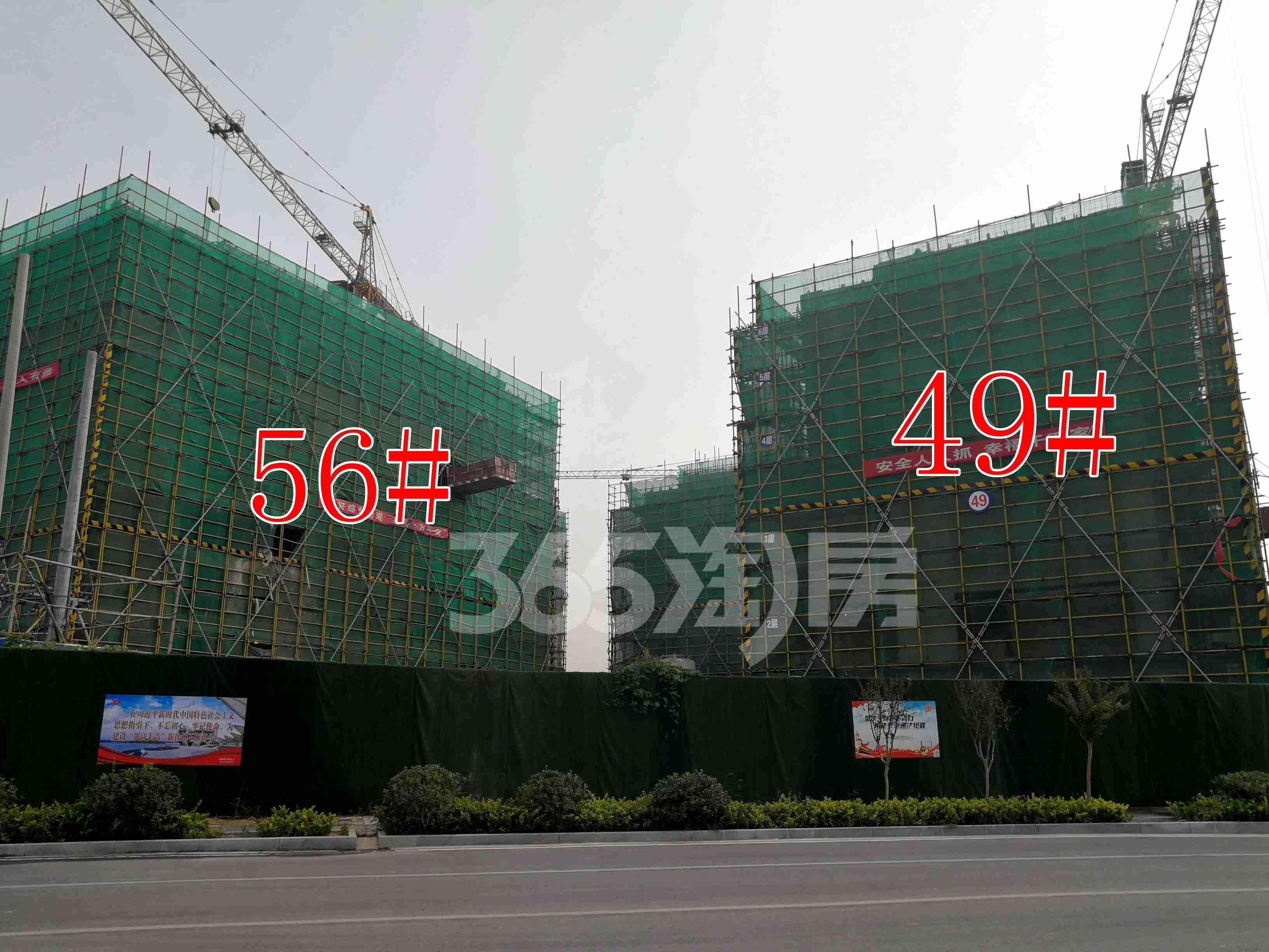 观澜别院49、56#工地实景图(9.26)