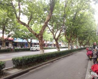诚厦商业地产专营:雨花南路沿街商铺出租可餐饮