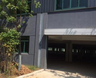 扬子江隧道旁 5000平方独门独院厂房仓库出租面积大小可以