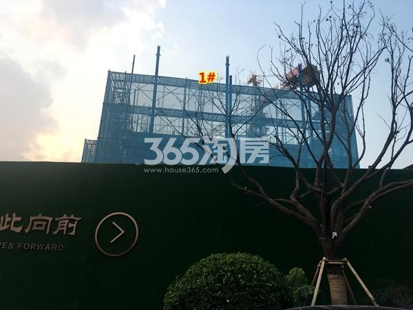 万科北门塘上1#楼高层工程进度实景(2017.11摄)