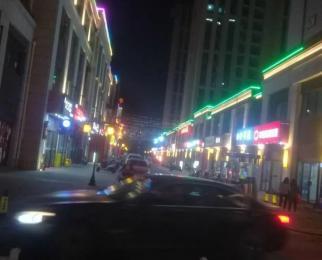 公园大道 快慢里商业街 58平小户型商铺 仅此一间