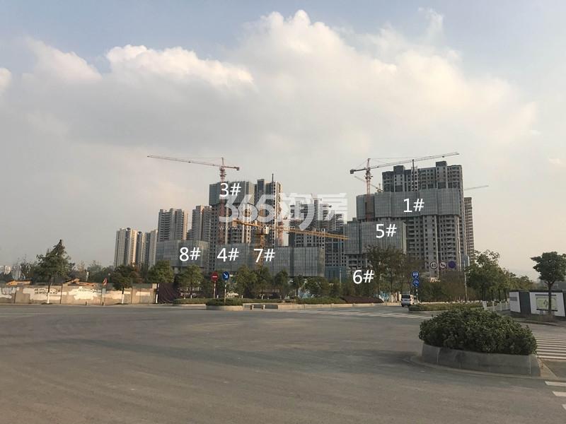 中航国际社区南组团楼栋进展(11.24)