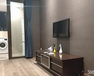 奥体 升龙汇金中心 豪装单身公寓 拎包入住 带燃气