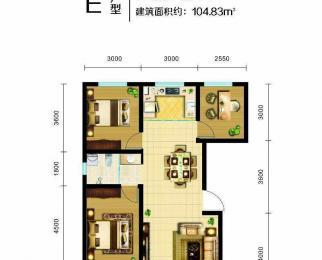 彩虹心筑2室2厅1卫87平米2017年产权房毛坯