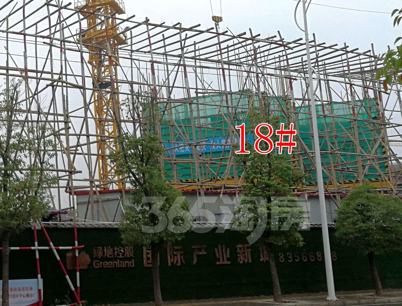 绿地国际产业新城莫兰迪公馆实景图