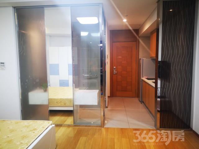 星湖公馆1室1厅1卫48平米整租精装