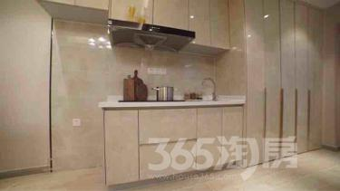 华元欢乐城1室1厅1卫32平米精装产权房2016年建