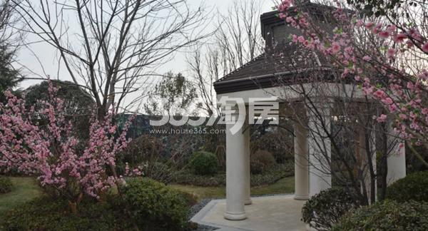 蓝光公园华府小区实景拍摄(2018.3.6)