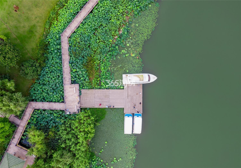 碧桂园湖光山色鸟瞰图