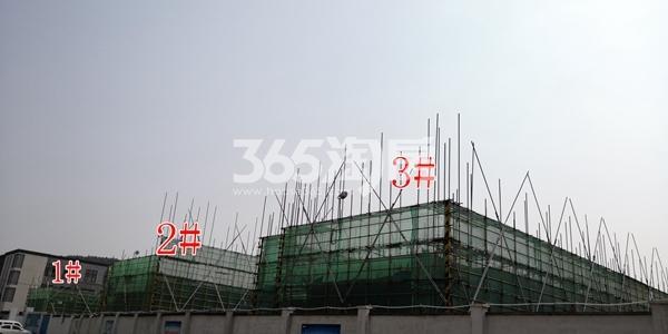 绿地理想城悦湖公馆低密度多层1、2、3#楼均建至2层以上(6.5)