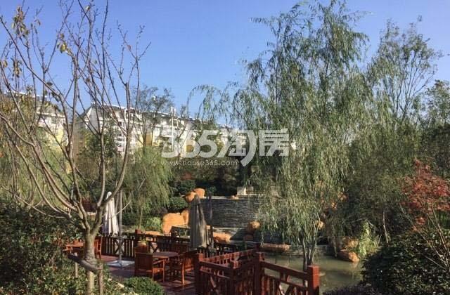 保利西山林语小区内风景(2017.11.30)