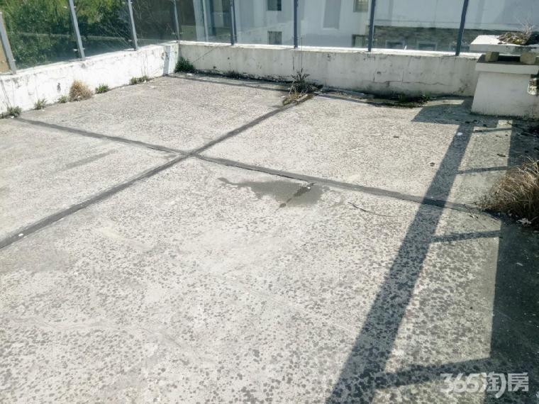 独栋别墅送大院子送地面车库小区中心位置图片