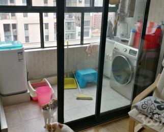 金基汇锦国际2室2厅1卫50平米整租精装