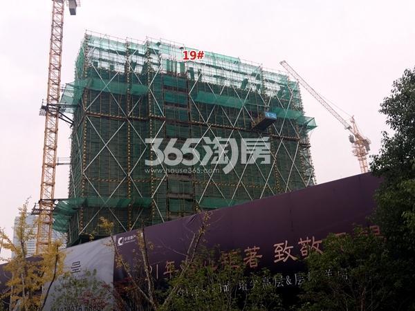 中锐星公元19#楼高层工程实景(2017.11摄)