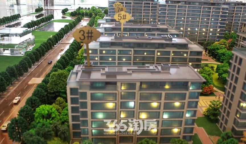 滨湖双玺售楼部沙盘3#5#实景图(2017.12.1)