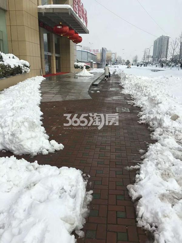 春江朗月 营销中心雪景 201801