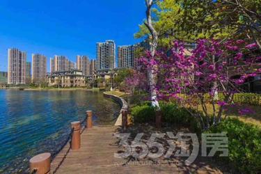 300亩湖景空中墅,6米挑高客厅!品质生活首选!