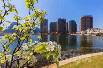 不限购就买桂林最美小区