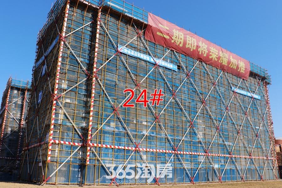 荣盛华府24#施工中(2018.1摄)