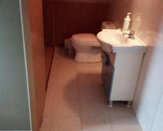 南湾营1室1厅1卫43平米有跃层,整租精装