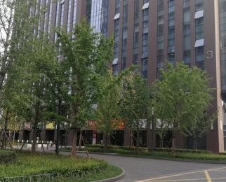 天龙寺地铁口 户型方正 两面采光 双扇玻璃门 得房率高 现