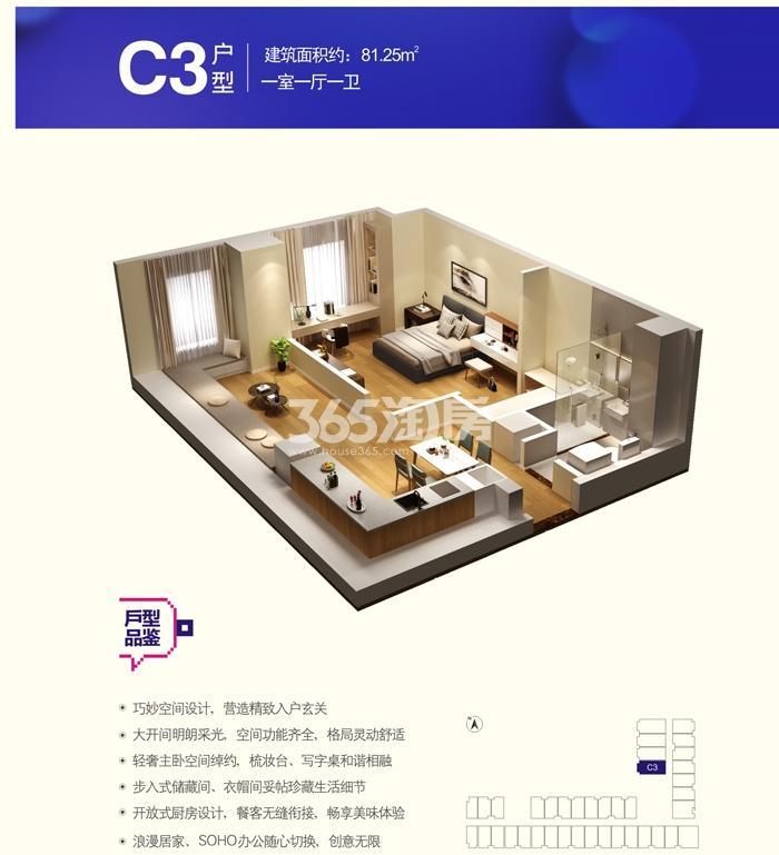 KingMall未来中心C3户型一室一厅一卫81.25㎡