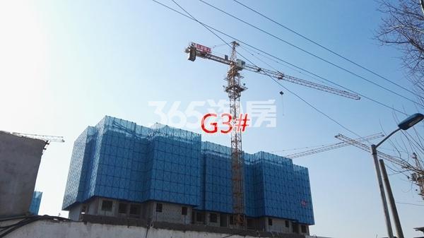 万科翡翠天御高层3#楼建至5层以上(1.15)