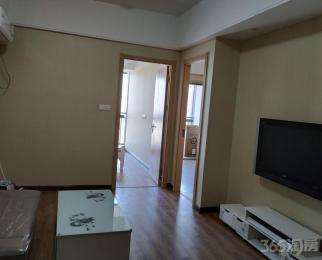 滨湖新地城市广场2室2厅1卫80平米整租豪华装