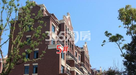 悦湖山院5#楼实景(2018.1.15)
