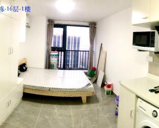 龙湖新壹城2室2厅2卫40平米豪华装整租