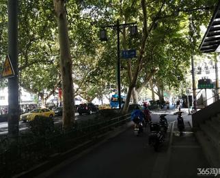 夫子庙商圈平江府路商铺 位置好 客流量大 房东直租