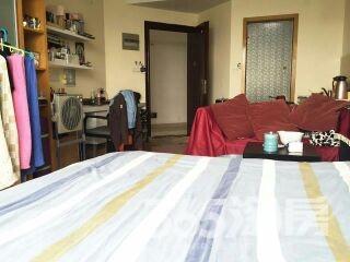 紫鑫国际公寓1室1厅1卫45平米整租精装