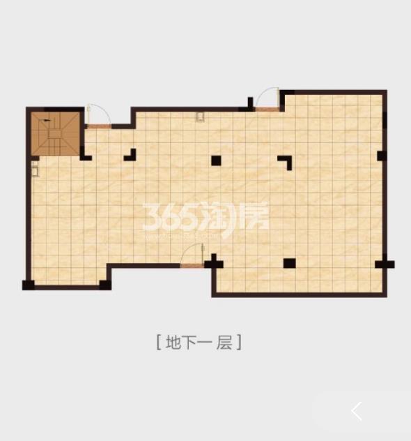 高科紫微堂平墅B1-1户型图286㎡地下室