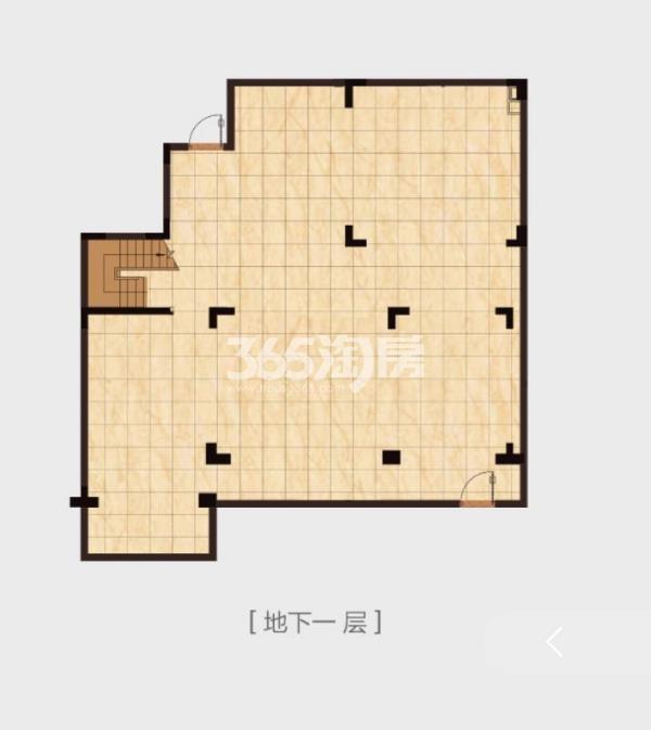 高科紫微堂平墅D1-1户型图347㎡(负一楼)