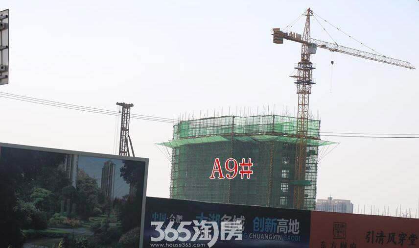 东方樾府9#楼实景图(2017.6)