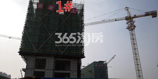 中海熙岸华府1#楼洋房建至8层(3.16)