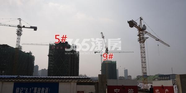 中海熙岸华府5#楼洋房及高层9#楼实景(3.16)