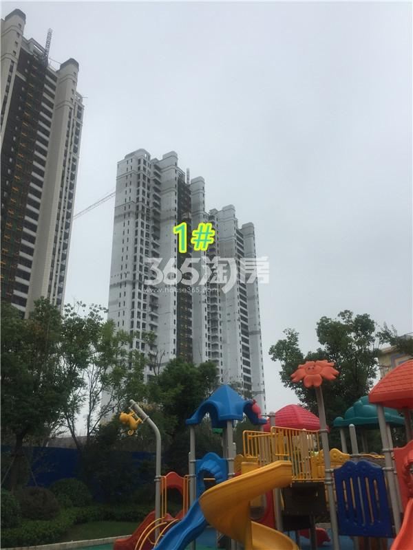 金象朗诗红树林楼栋施工进展(9.23)