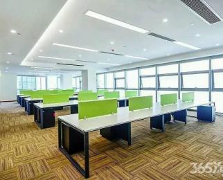 甲方直招 河西地标 新地中心 精装高端写字楼320平 各大名