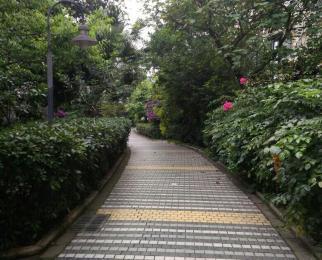 滨江世纪花园2室2厅1卫72平米2012年产权房精装