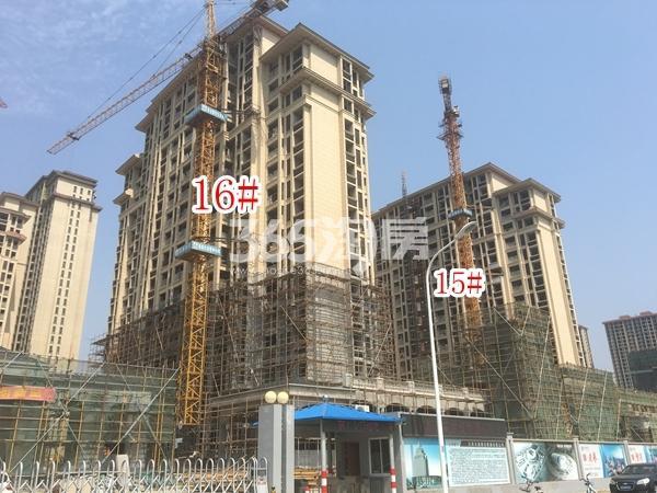长泰国际社区南地块高层15#、16#楼实景图(2018.6 摄)
