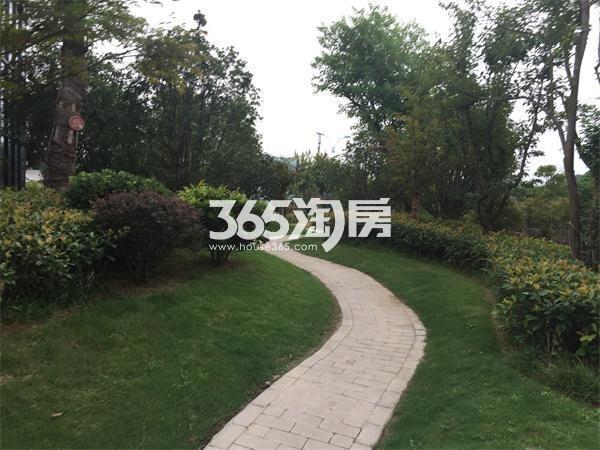 周边实景图(8.19)