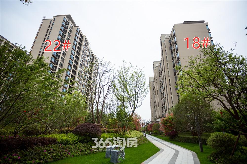 伟星芜湖院子东院工程进度实拍:22#外立面涂料大面完成(2020.4月摄)