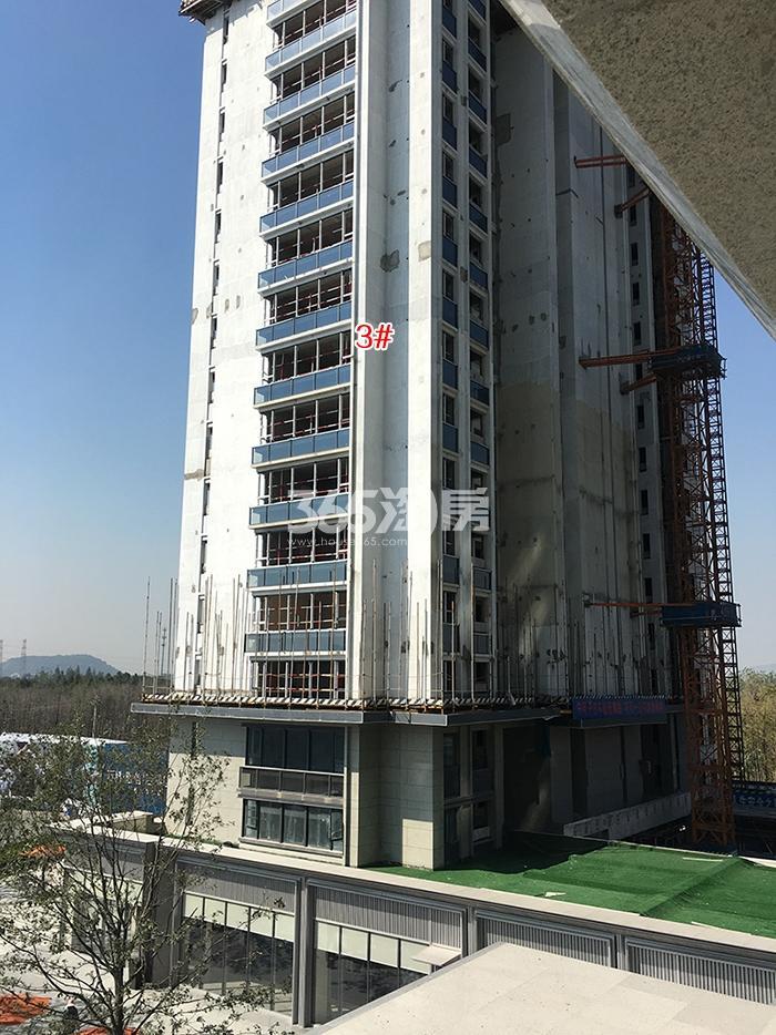 万科融信西雅图3号楼实景图(2017.10)
